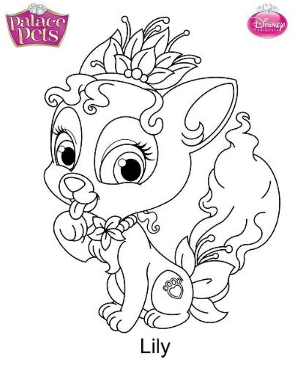 Lily Mascota Disney Dibujo Colorear Dibujalandia